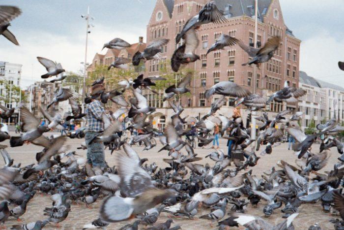 صور أمستردام، صور سفر، أفضل المعالم السياحية في أمستردام، ساحة دام