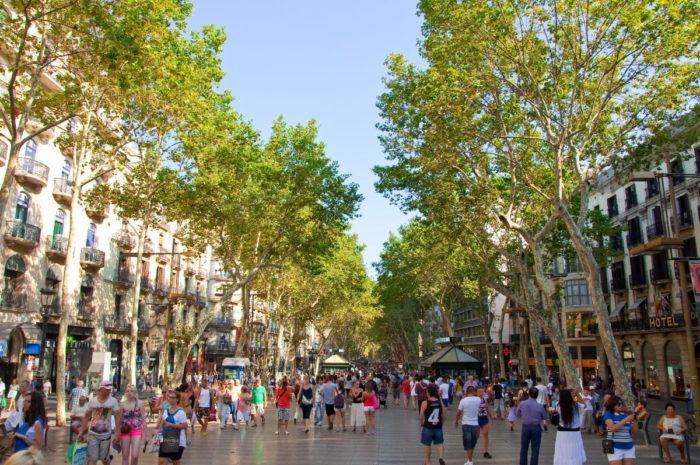 صور برشلونة، صور سفر، أفضل المعالم السياحية في برشلونة، شارع لا رامبلا