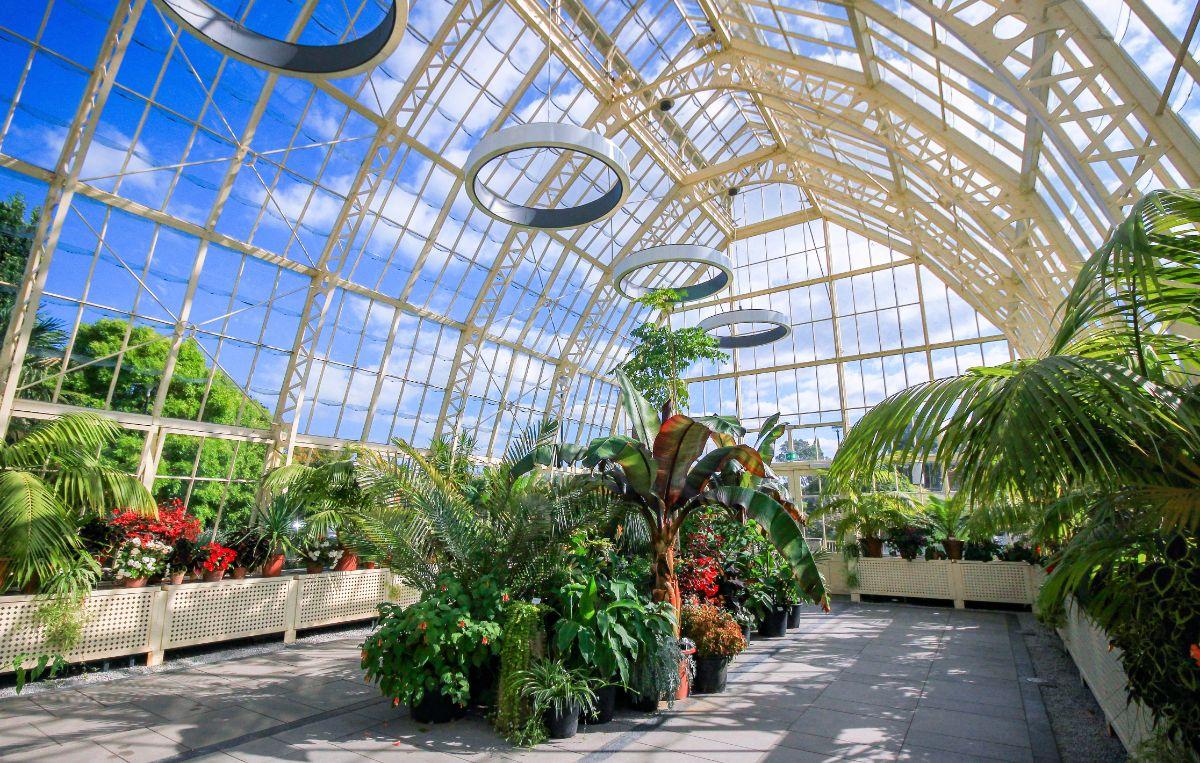 صور دبلن، صور سفر، أفضل المعالم السياحية في دبلن، حديقة النباتات الوطنية