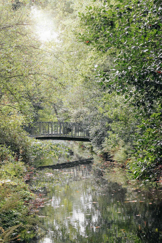 صور روتردام، صور سفر، أفضل المعالم السياحية في روتردام، حديقة ترومبنبيرج
