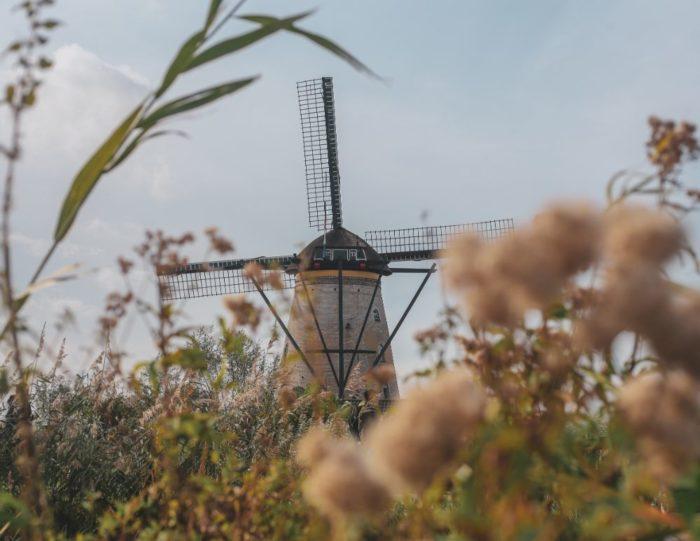 صور روتردام، صور سفر، أفضل المعالم السياحية في روتردام، طواحين كرنديريك