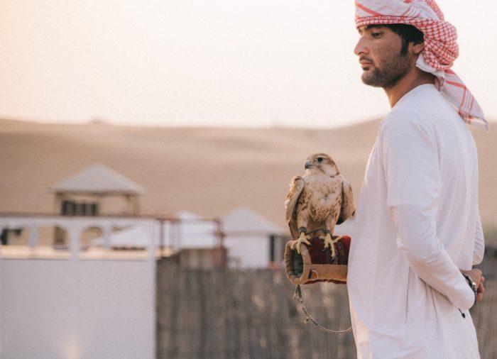 صور سفر، المعالم السياحية في الامارات سفاري الصحراء، دبي