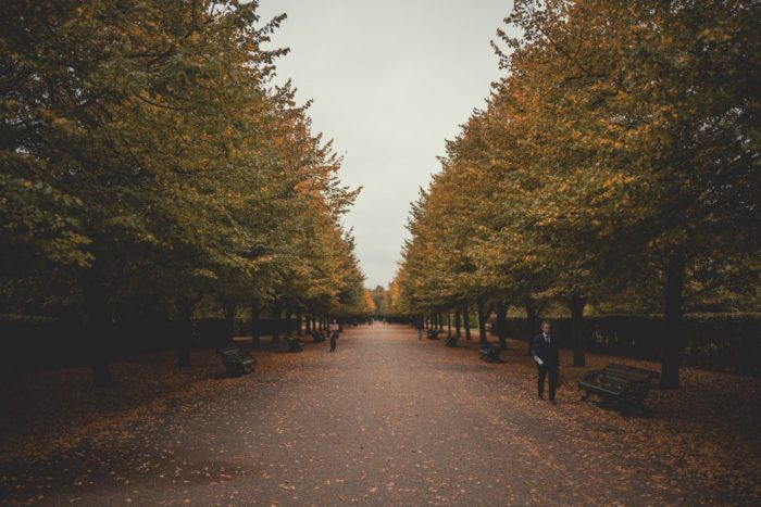 صور سفر، المعالم السياحية في المملكة المتحدة حديقة ريجنت بارك، لندن