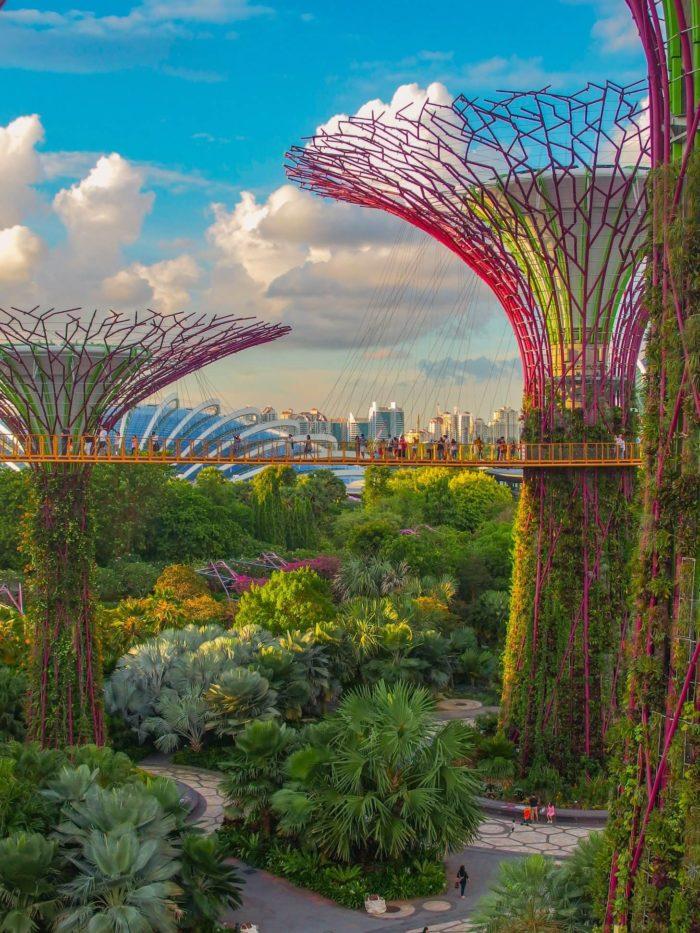 صور سفر، المعالم السياحية في سنغافورة الحدائق بجانب الخليج