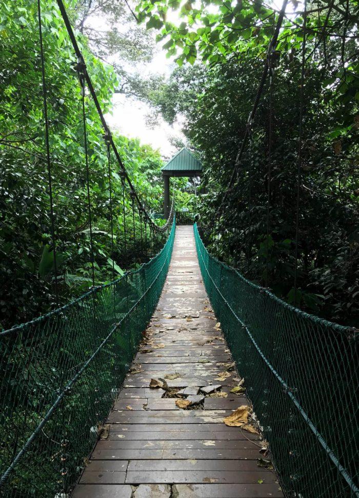 صور سفر، المعالم السياحية في ماليزيا حديقة ايكو فورست، كوالالمبور