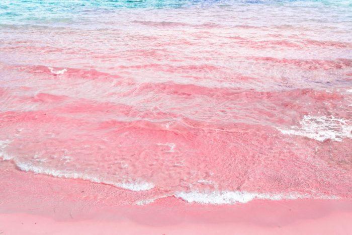 صور سفر، أجمل الشواطئ في العالم، شاطئ الرمال الوردي