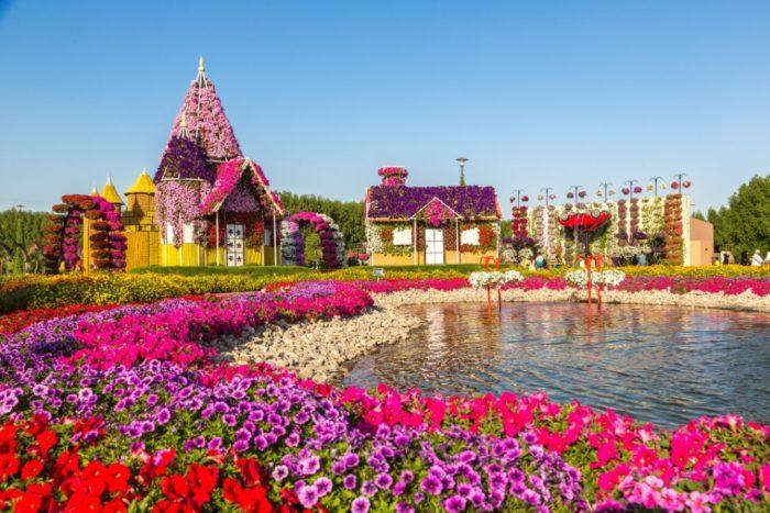 صور سفر، أجمل حقول الزهور في العالم، حديقة دبي المعجزة، الامارات