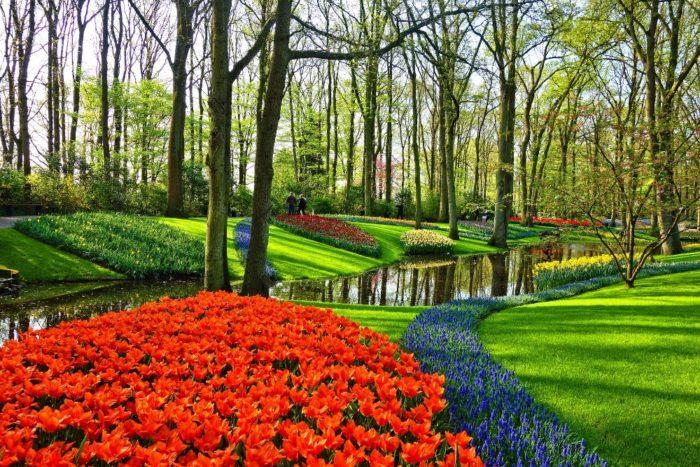 صور هولندا، أجمل المعالم السياحية في هولندا، حديقة كوكينهوف، ليسه