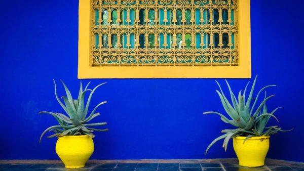 صور سفر مراكش، أفضل المعالم السياحية في مراكش، حديقة ماجوريل